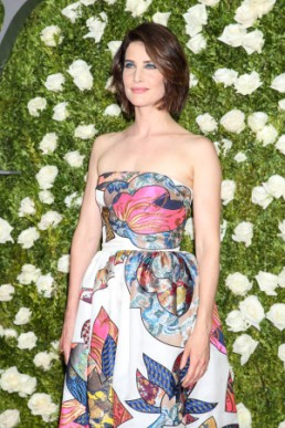 READ CAPTION Cobie Smulders in Schiaparelli